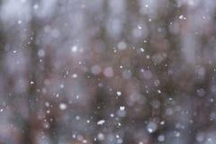 Sneeuw Dalende Textuur Als achtergrond Royalty-vrije Stock Foto