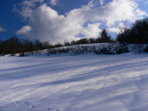Sneeuw in de Alpen (Vercors), Frankrijk Royalty-vrije Stock Foto's