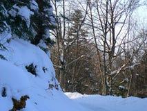 Sneeuw in de Alpen (Vercors), Frankrijk Royalty-vrije Stock Afbeeldingen