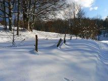 Sneeuw in de Alpen (Vercors), Frankrijk Stock Foto