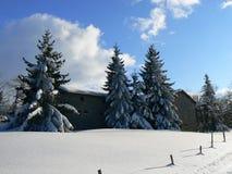 Sneeuw in de Alpen (Vercors), Frankrijk Royalty-vrije Stock Foto