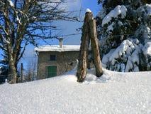 Sneeuw in de Alpen (Vercors), Frankrijk Stock Fotografie