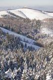 Sneeuw in de berg Royalty-vrije Stock Foto
