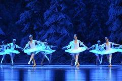 Sneeuw de elf-eerste handeling van het vierde Land van de gebiedssneeuw - de Balletnotekraker royalty-vrije stock foto's