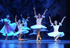 Sneeuw de elf-eerste handeling van het vierde Land van de gebiedssneeuw - de Balletnotekraker royalty-vrije stock foto
