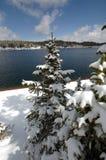 Sneeuw de lentedag bij het Meer royalty-vrije stock foto's