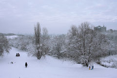 Sneeuw in de stad Royalty-vrije Stock Foto's
