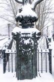 Sneeuw in de stad van New York Stock Foto