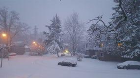 Sneeuw in de winter stock afbeelding