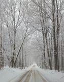 Sneeuw de winter behandelde steeg Stock Foto's