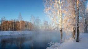 Sneeuw de winterbos met struiken en berkbomen op de banken van de rivier met mist, Rusland, het Oeralgebergte, Januari stock foto's