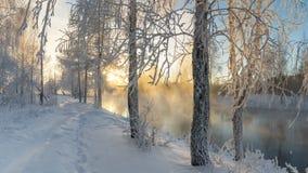 Sneeuw de winterbos met struiken en berkbomen op de banken van de rivier met mist, Rusland, het Oeralgebergte, Januari royalty-vrije stock afbeelding