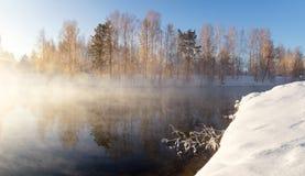 Sneeuw de winterbos met struiken en bomen op de banken van de rivier met mist, Rusland, het Oeralgebergte Royalty-vrije Stock Foto's