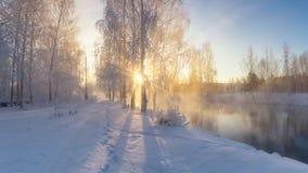 Sneeuw de winterbos met struiken en bomen op de banken van de rivier met mist, Rusland, het Oeralgebergte royalty-vrije stock foto