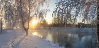 Sneeuw de winterbos met struiken en bomen op de banken van de rivier met mist, Rusland, het Oeralgebergte stock foto