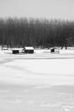 Sneeuw de winterlandschap Stock Foto