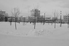 Sneeuw de winterlandschap Royalty-vrije Stock Afbeeldingen