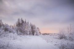 Sneeuw de winterlandschap op zonsondergang royalty-vrije stock foto