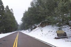 Sneeuw die bij kampeerterrein op Palomar-Berg vallen Royalty-vrije Stock Foto's