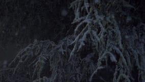 Sneeuw die bij Nacht vallen stock footage