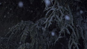 Sneeuw die bij Nacht 04 1 vallen stock video