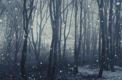 Sneeuw die in de winterbos vallen stock fotografie