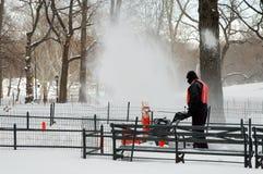 Sneeuw die in het park blaast Stock Afbeelding