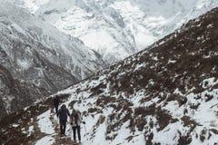 Sneeuw die in Himalayagebergte wandelen Royalty-vrije Stock Foto's