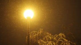 Sneeuw die op de achtergrond van straatlantaarn bij nacht vallen stock videobeelden