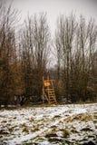 Sneeuw die op toppositie in het bos vallen royalty-vrije stock foto