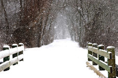 Sneeuw die sidways in een park blazen Stock Foto's