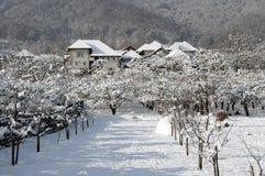 Sneeuw dorpshotel in de winterboomgaard stock foto's