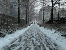Sneeuw Duitsland 2017 Royalty-vrije Stock Afbeelding