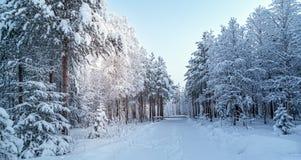 Sneeuw en blauwe hemel met wolken en stok Royalty-vrije Stock Fotografie