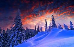 Sneeuw en blauwe hemel met wolken en stok Stock Foto's