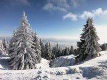 Sneeuw en blauwe hemel met wolken en stok Royalty-vrije Stock Foto
