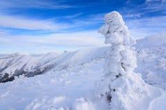 Sneeuw en blauwe hemel met wolken en stok Stock Foto