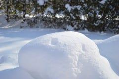 Sneeuw en bont 2 Royalty-vrije Stock Fotografie