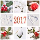2017, sneeuw en collage van de de winter de rode en witte aard Stock Fotografie