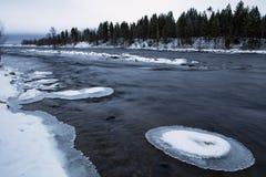 Sneeuw en ijs op de rotsen in de rivier Stock Foto's
