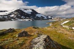 Sneeuw en meer in het nationale park van Jotunheimen royalty-vrije stock foto's