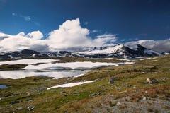 Sneeuw en meer in het nationale park van Jotunheimen royalty-vrije stock fotografie