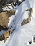 Sneeuw en rotsensamenvatting stock afbeelding