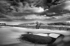 Sneeuw en zand Royalty-vrije Stock Afbeelding
