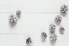 Sneeuw geschilderde denneappels op rustieke witte houten lijst Ruimte voor te Royalty-vrije Stock Foto