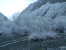 Sneeuw het bekijken in het beëindigen van sneeuwseizoen stock foto's