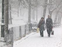 Sneeuw in het park Stock Foto's