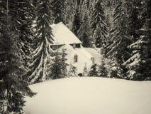 Sneeuw Houten Plattelandshuisje Royalty-vrije Stock Foto
