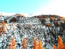 Sneeuw Italiaanse Alpen Stock Afbeeldingen