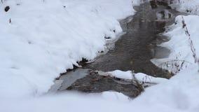 Sneeuw Koud Waterstroom stock video
